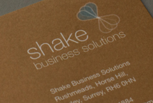 Shake Business Solutions